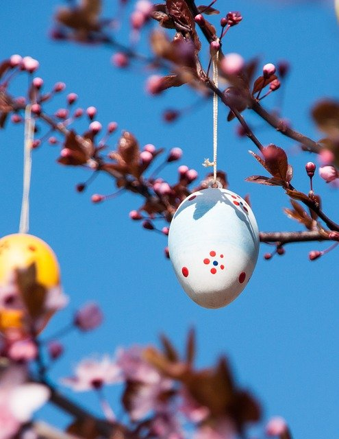 Blue sky. Easter eggs in a tree